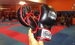 MMA 'Sparring' Gloves - New