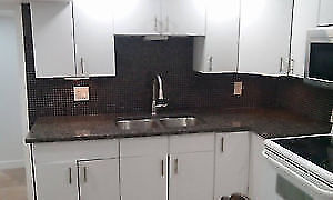 FULLY RENOVATED & FINISHED BASEMENT FOR RENT IN ALLENDE