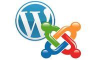 Joomla & Wordpress Webste Admin and Development