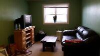 One Bedroom Apt for Rent