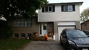 4 Bedroom House for rent in Beeton