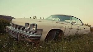 Looking for old cars and trucks