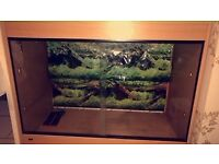 Large reptile enclosure for sale and accessories included