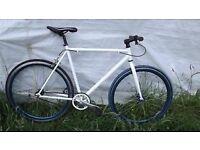 Custom Single Speed Road Bike