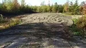 Trade 41 acre woodlot for loader with plow or truck with plow