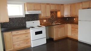 New Roommate Needed for 2 Bedroom Apartment