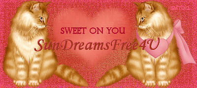 sundreams_free_4u