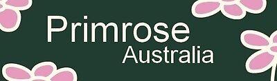 Primrose Australia