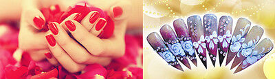 beauty lady_nailart