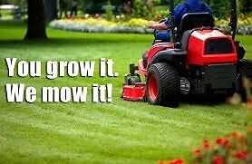 Lawn mowing & yard maintenance Cessnock Cessnock Area Preview