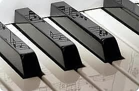 Piano Lessons for Adults St. John's Newfoundland image 1