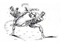 MMA and Taichi