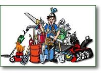 Handyman Job Wanted
