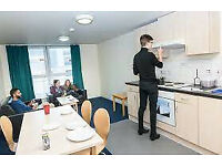 Student Accommodation in Belgrave View Campus Living Villages Cheap and Affordable Rates
