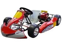 PETROL GO KARTS WANTED, 4 STROKES AND 2 STROKES, NO OVER PRICE KARTS, FAST PICK UP