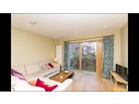 Beautiful Two Bedroom Flat with GARAGE for rent in Clifton