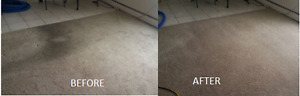 Professional Steam Carpet Cleaning      519.701.0549 London Ontario image 6