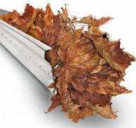 GOT DIRTY OR BROKEN GUTTERS? LAWN CARE & FALL CLEANUP, WINDOWS