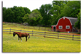 Wanted :  hobby farm or land