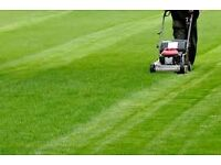 GRASS TRIMMING FROM 5 £ !!!