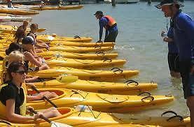 !!!!!!KAYAKS FOR RENT!!!!!!   $49 for a day  8' and 10' kayaks Sarnia Sarnia Area image 3