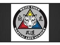 Croydon Group - Shiro Tora Budo Kai – White Tiger Martial Arts Association