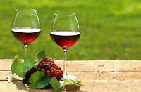 ARE YOUR DAYS FREE...FOR LOTS OF WINE, GOOD FOOD...LAUGHS