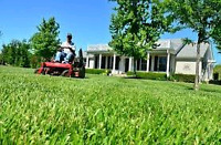 Lawn cutting and Trimming
