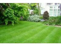 HANDY MAN FOR ALL YOUR PROPERTY REPAIRS & GARDEN MAINTENANCE