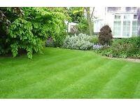 Local Independent Landscape Gardener