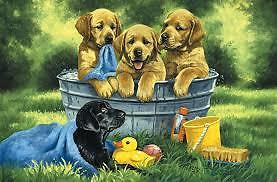 Check Out The Great Selection of Puzzles at Leading Edge Hobbies Kingston Kingston Area image 3