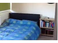 Monday-Friday let double bedroom in lovely house in Warwick