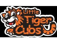 Little Tiger Cubs