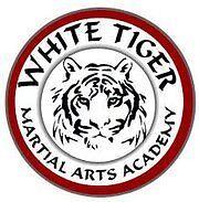 White Tiger Martial Arts - Croydon Team