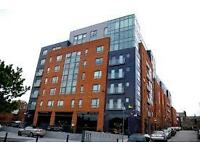 2 BEDROOM FLAT TO LET. CITYGATE. L1 2SU. FURNISHED