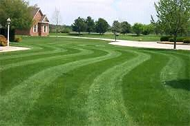 Affordable lawn mowing and garden maintenance Woodcroft Morphett Vale Area Preview
