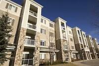 One BDRM condo in University Heights