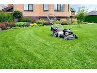 Gardener available Lawn mowing | Hedge trimming| weed removal | Pressure Washing