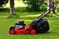 GRASS CUTTING AND YARD CLEAN UP