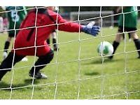 5 a side Football Team Seeking Goalkeeper!