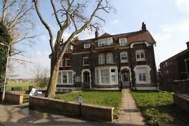 Studio flat in Mount View Road, London, N4