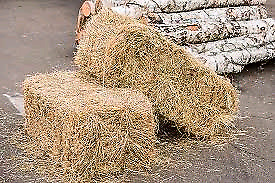 300 square bales of straw (this year)