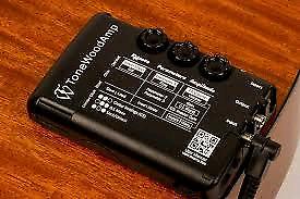 Tone Wood Amp