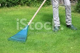FALL LAWN RAKING SERVICES AND DRIVEWAY SWEEPING/CLEANING