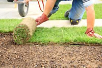 Lawn laying/Installation de tourbe