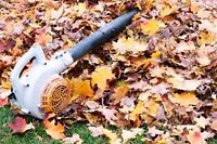 SUPERB LEAF CLEANUP