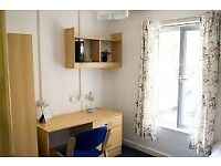 Three Months (long term negotiable) Rent 70ppw (bill included) in Town centre, bargain! Sheffield