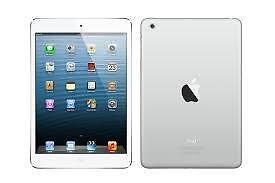 iPad mini 1, 16GB, No Contract *BUY SECURE*