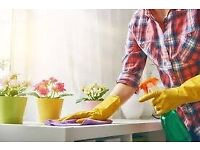 Cleaning in your house