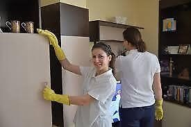 END OF TENANCY CLEANER,CARPET CLEANING,OVEN CLEANING,REMOVALS,MAN AND VAN COBHAM SURREY